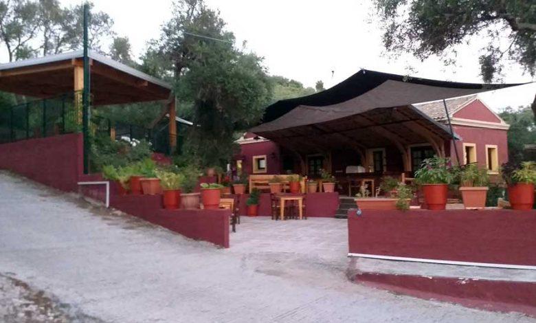 Εστιατόριο Ταβέρνα Κέρκυρα Ελιά Μυρτιώτισσα 1